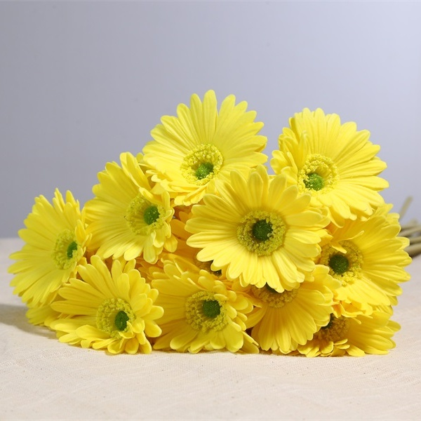 Real Touch Pu Gerbera Artificial Flowers